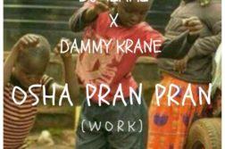 DJ Tiami X Dammy Krane - Osha Pran Pran (Work)