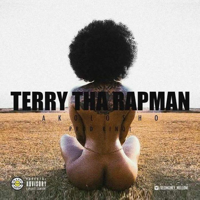 Terry Tha Rapman - Akolosho