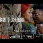 Bukwild ft. Magnito – Uche (Remix) [New Video]
