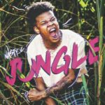 Nasty C – Jungle [New Music]