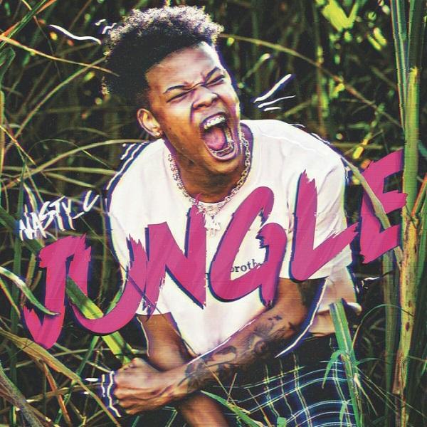 Nasty C - Jungle