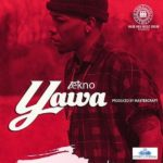 Tekno – Yawa [ThrowBack Hit Song]