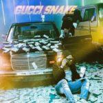 Wizkid – Gucci Snake ft. Slimcase [Teaser]