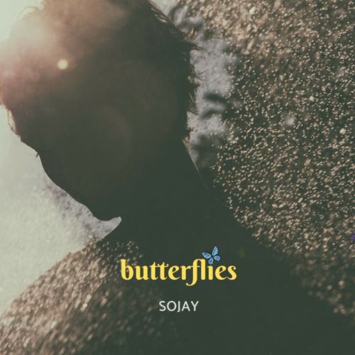 SoJay - Butterflies mp3 audio
