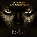 DJ Thakzin – Vul'Amehlo ft. NaakMusiQ [New Song]