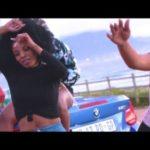 Dladla Mshunqisi – Ses'fikile ft. Tipcee [New Video]