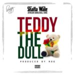 Shatta Wale – Teddy The Dull [New Music]