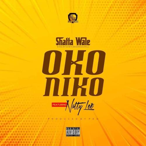 Shatta Wale feat. Natty Lee - Oko Niko