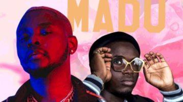 Kizz Daniel - Madu (Remix) feat. 2Free