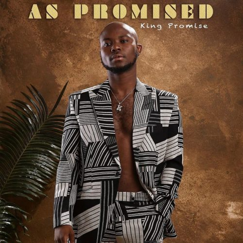 DOWNLOAD King Promise - 'My Lady' MP3