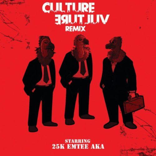 DOWNLOAD 25k - Culture Vulture (Remix) ft. AKA & Emtee MP3
