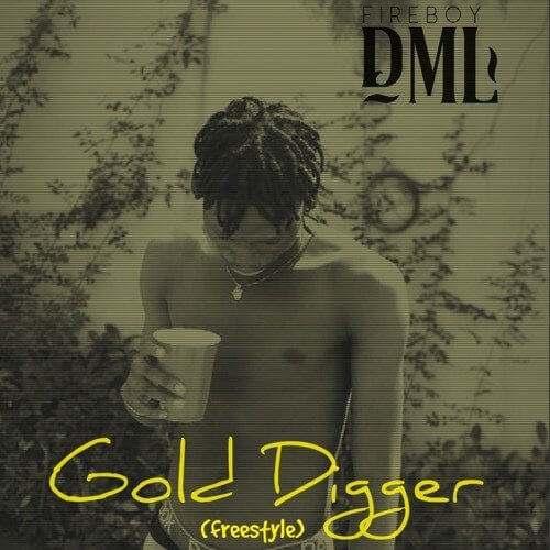 DOWNLOAD Fireboy DML – Gold Digger (Freestyle) MP3