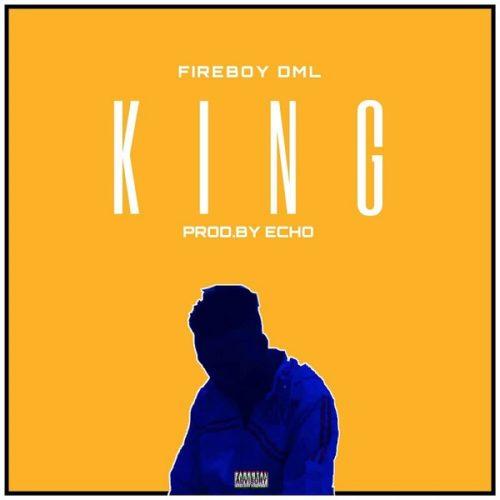 DOWNLOAD Fireboy DML - 'King' MP3