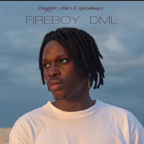 download Fireboy DML - Laughter, Tears & Goosebumps (Album)
